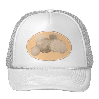 Sea Shells Cap Trucker Hat