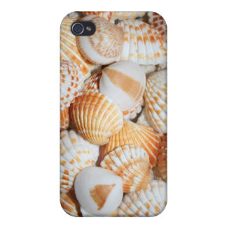 Sea shells case for iPhone 4