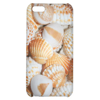 Sea shells case for iPhone 5C