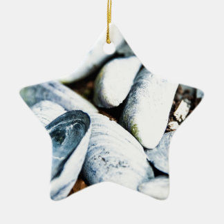 Sea Shells Ceramic Ornament