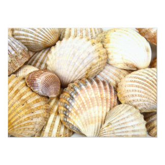 Sea Shells Collage Personalized Announcement