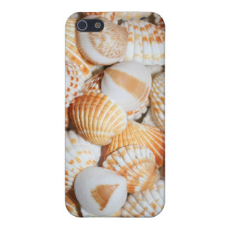 Sea shells iPhone 5 covers