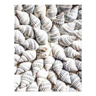 sea shells letterhead