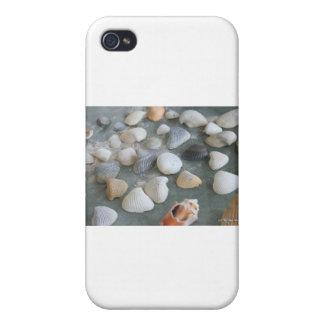 Sea Shells Ocean   Case For iPhone 4