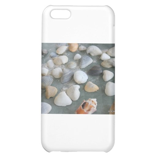 Sea Shells Ocean   Case For iPhone 5C