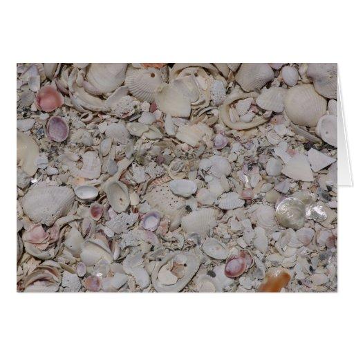 Sea shells Of sanibel Greeting Card