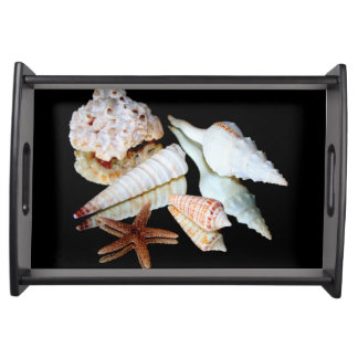 Sea Shells on a Mirror Serving Trays