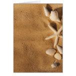 Sea shells on sand card