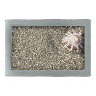 Sea shells on sand. Summer beach background Rectangular Belt Buckle