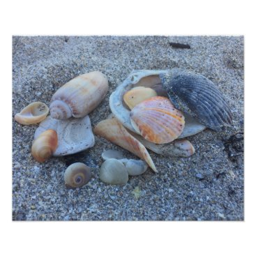 Beach Themed Sea Shells Paradise Beach Poster