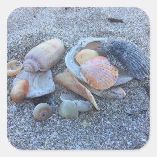 Sea Shells Paradise Beach Square Sticker