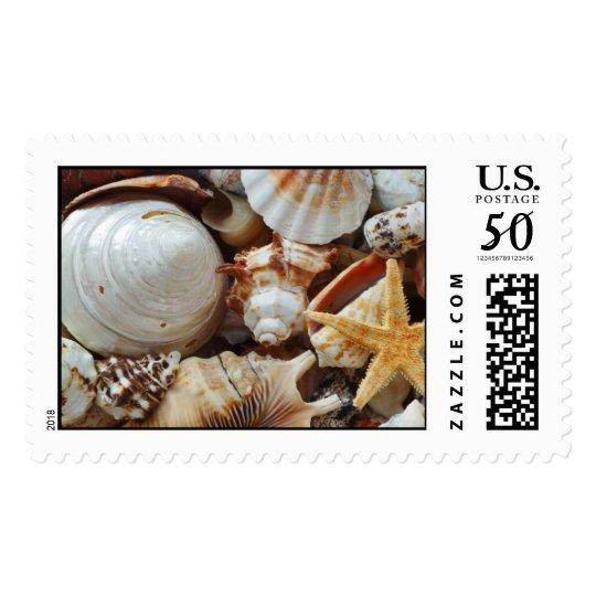 sea shells postage