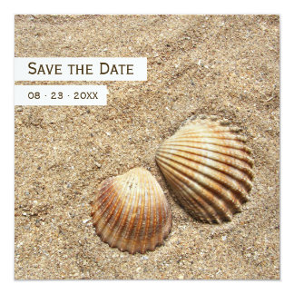 Sea Shells - Save the date announcement