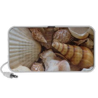 Sea Shells Speaker System