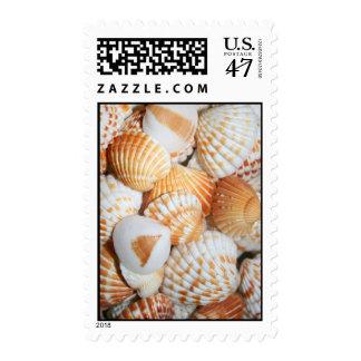 Sea shells stamp