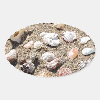 Sea shells. oval stickers