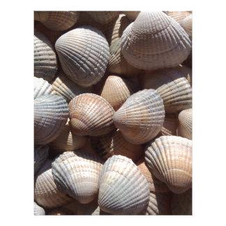 Sea Shells, Summer Beach Exotic Tropical Romantic Letterhead