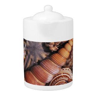 Sea shells Teapot (2) SIZES