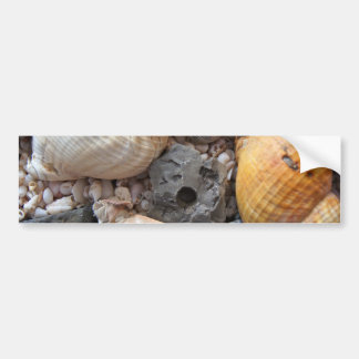 Sea Shells Upon the Beach Bumper Sticker