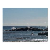 Sea Shore Postcard