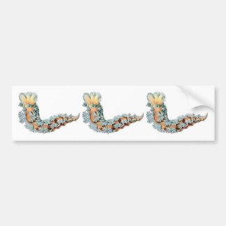 Sea Slug Bumper Sticker