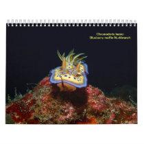 Sea Slugs Calendar