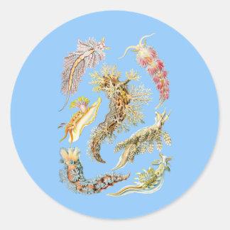 Sea slugs classic round sticker
