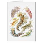 Sea slugs greeting card