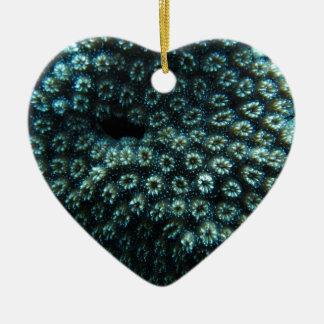 Sea-smallpox Ceramic Ornament