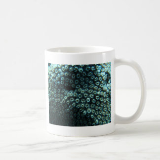 Sea-smallpox Coffee Mug