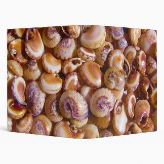 Sea Snail Shells Cyclops Nassa Cyclope Pellucidus 3 Ring Binder
