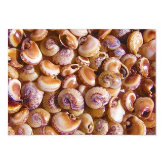 Sea Snail Shells Cyclops Nassa Cyclope Pellucidus Custom Invite