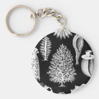 Sea Sponge in Cream and Black Keychain