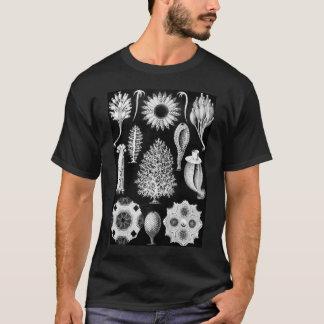 Sea Sponge in Cream and Black T-Shirt