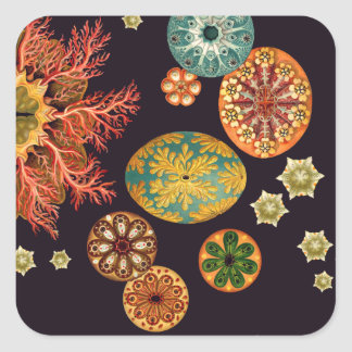 Sea Squirt Remix Stickers