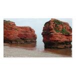 Sea Stack Rocks. Ladram Bay. Devon. UK. Business Card