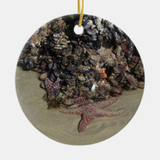 Sea star and other marine life ceramic ornament