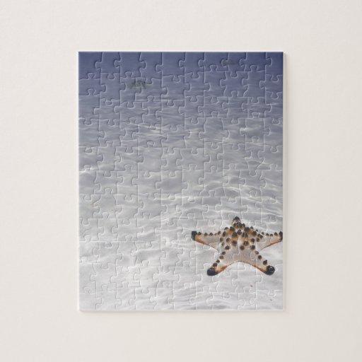 Sea Star on sandy bottom underwater Puzzle
