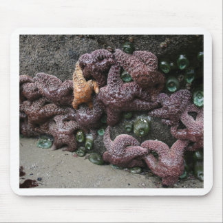 Sea Star Party Mouse Pad