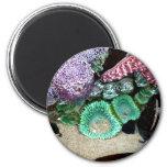 Sea Stars Anemones Magnet