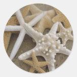 Sea Stars Classic Round Sticker