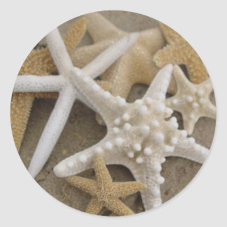 Sea Stars Classic Round Sticker