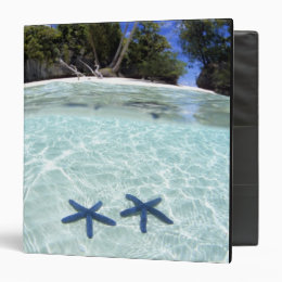 Sea stars, Rock Islands, Palau 2 Binder