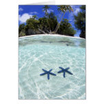 Sea stars, Rock Islands, Palau 2 Greeting Cards