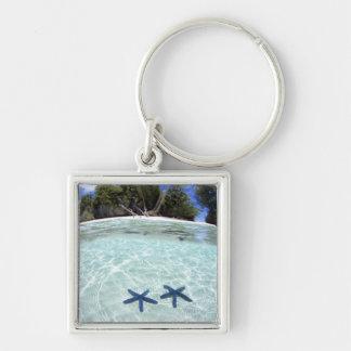 Sea stars, Rock Islands, Palau 2 Keychain
