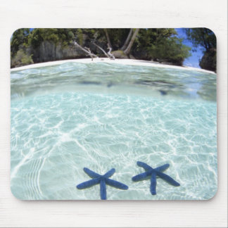 Sea stars, Rock Islands, Palau 2 Mouse Pad