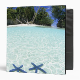 Sea stars, Rock Islands, Palau Binder
