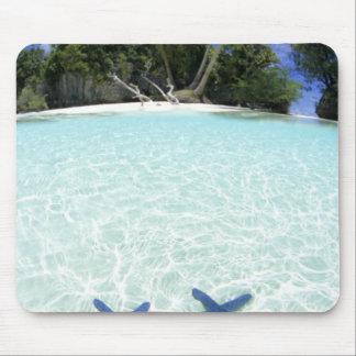 Sea stars, Rock Islands, Palau Mouse Pad