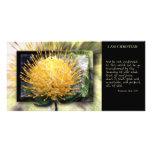 Sea tarjeta transformada YE de la escritura Tarjetas Fotograficas