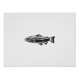 Sea Trout Spotted Poster